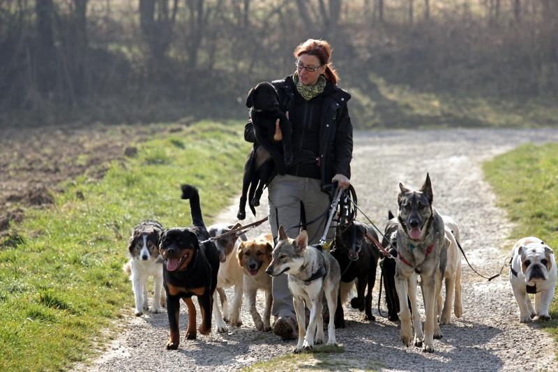 Ramona Rach mit Hunden